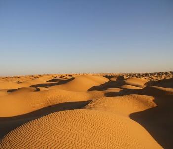 TUNEZ: DESIERTO Y PLAYA