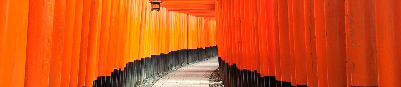JAPÓN: SOL NACIENTE